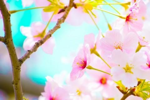 春らしいネイル